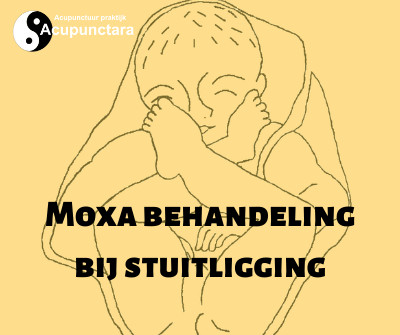 stuitligging